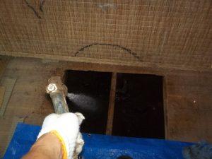 シロアリ 床下点検口2